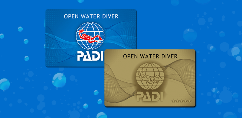 PADIオープン・ウォーター・ダイバー・コース